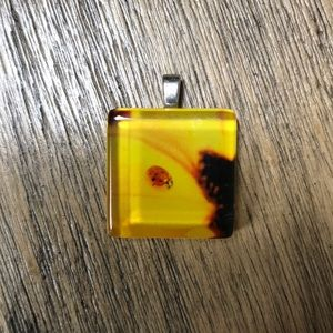 {Ladybug Glass Pendant}
